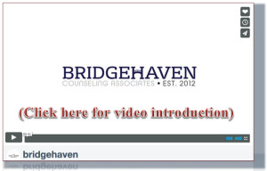 Bridgehaven Introduction